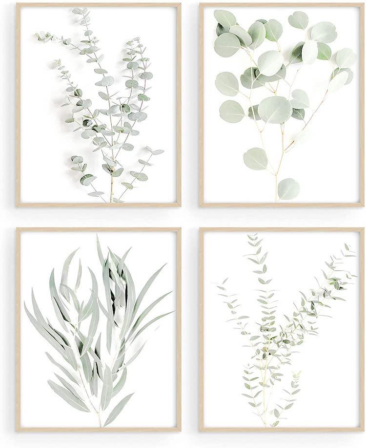 Haus and Hues Botanical Plant Wall Art Prints